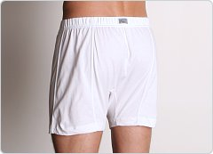 2xist Essential Button Fly Boxer White