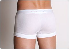 2xist Essential No-Show Trunk White
