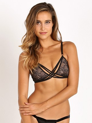 Thistle & Spire Star Crossed Bralette Black