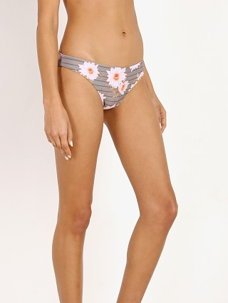 Acacia Nalima Bikini Bottom Dragon Stripe