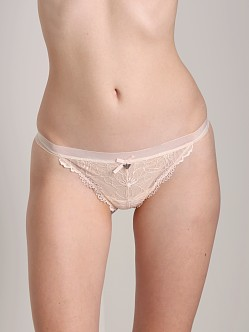 Emporio Armani Chic Lace Thong Light Pink
