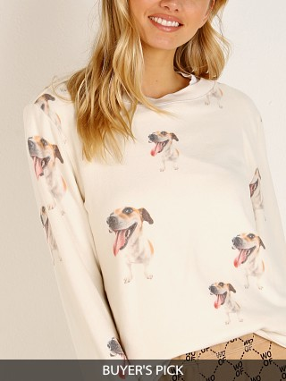Model in lace All Things Fabulous Jack Terrier Cozy Jumper