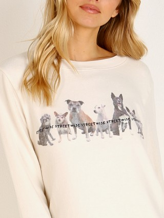 Model in lace All Things Fabulous Streetwise Dogs Cozy Jumper