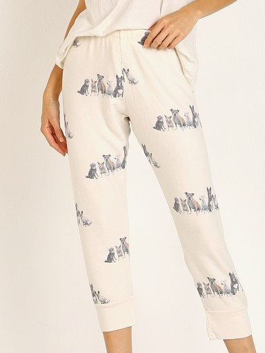 All Things Fabulous Streetwise Dogs Cozy Sweats Lace