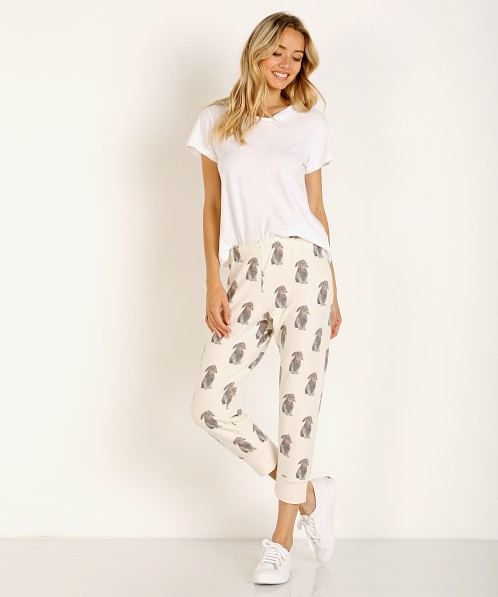 All Things Fabulous Otis Cozy Sweats Lace