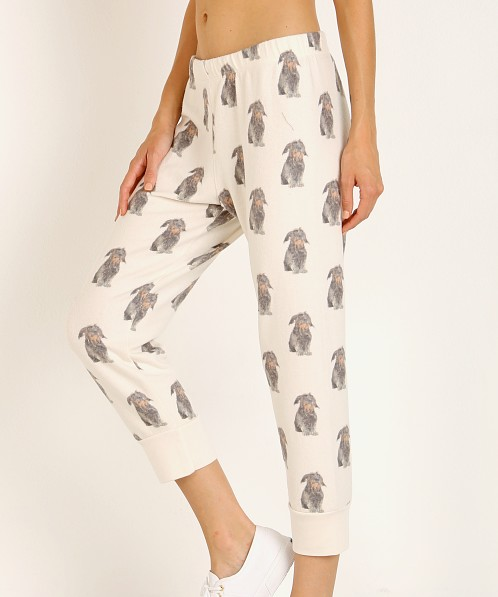 All Things Fabulous Otis Pup Cozy Sweats Lace