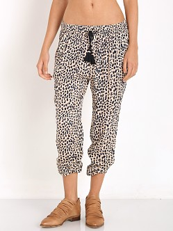 Amuse Society Cheyanne Pant Leopard