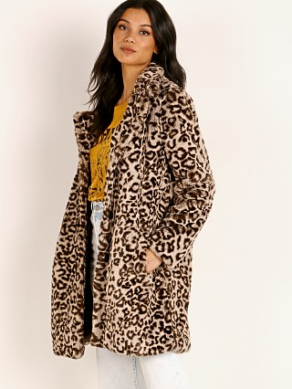 BB Dakota Meowie Wowie Coat Brown Leopard