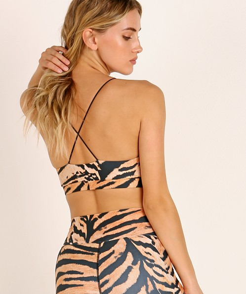 Beach Riot Nicolette Sports Bra Tiger