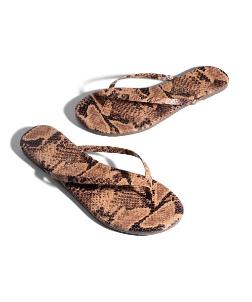 Tkees Studio Exotic Coco Snake