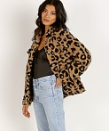 APPARIS Tiarra Teddy Bear Jacket Leopard Shearling, view 3