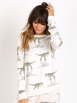 All Things Fabulous Raglan Cozy Jumper T-Rex