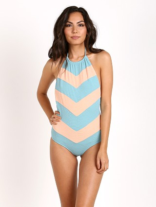 Beach Riot Mamabra One Piece Snakeskin